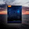 Book: Cyber Guerilla