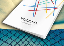 Vulcan Cyber