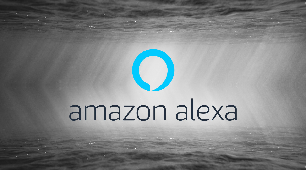 Alexa Skills: Security gaps and data protection problems - Help Net Security